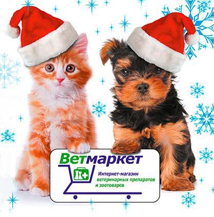 C наступающим Новым годом!!! Ветмаркет - оптовый интернет-магазин ветеринарных препаратов и зоотоваров
