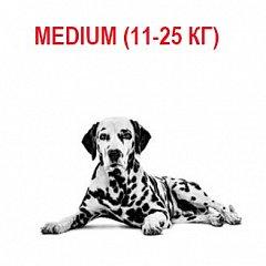 Medium (11-25 кг)