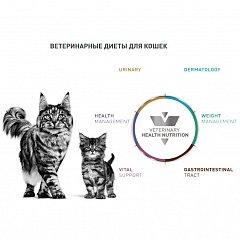 Vet Diet Feline Wet - ветеринарные диеты для кошек (паучи)