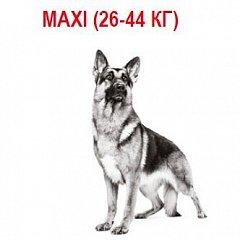 Maxi (26-44 кг)